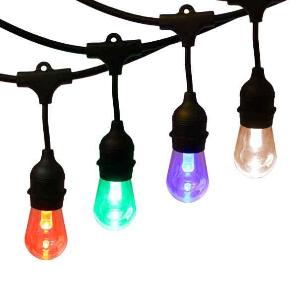 12V 15ft LED Filament Globe Light String Kit - Commercial Grade