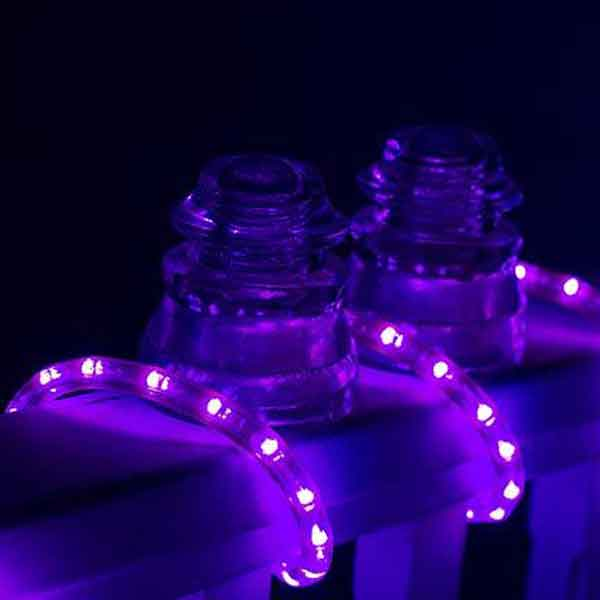 Dimmable led purple rope light 150ft spool aqlighting flexible lighting aloadofball Image collections